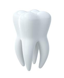 toothfullwhite